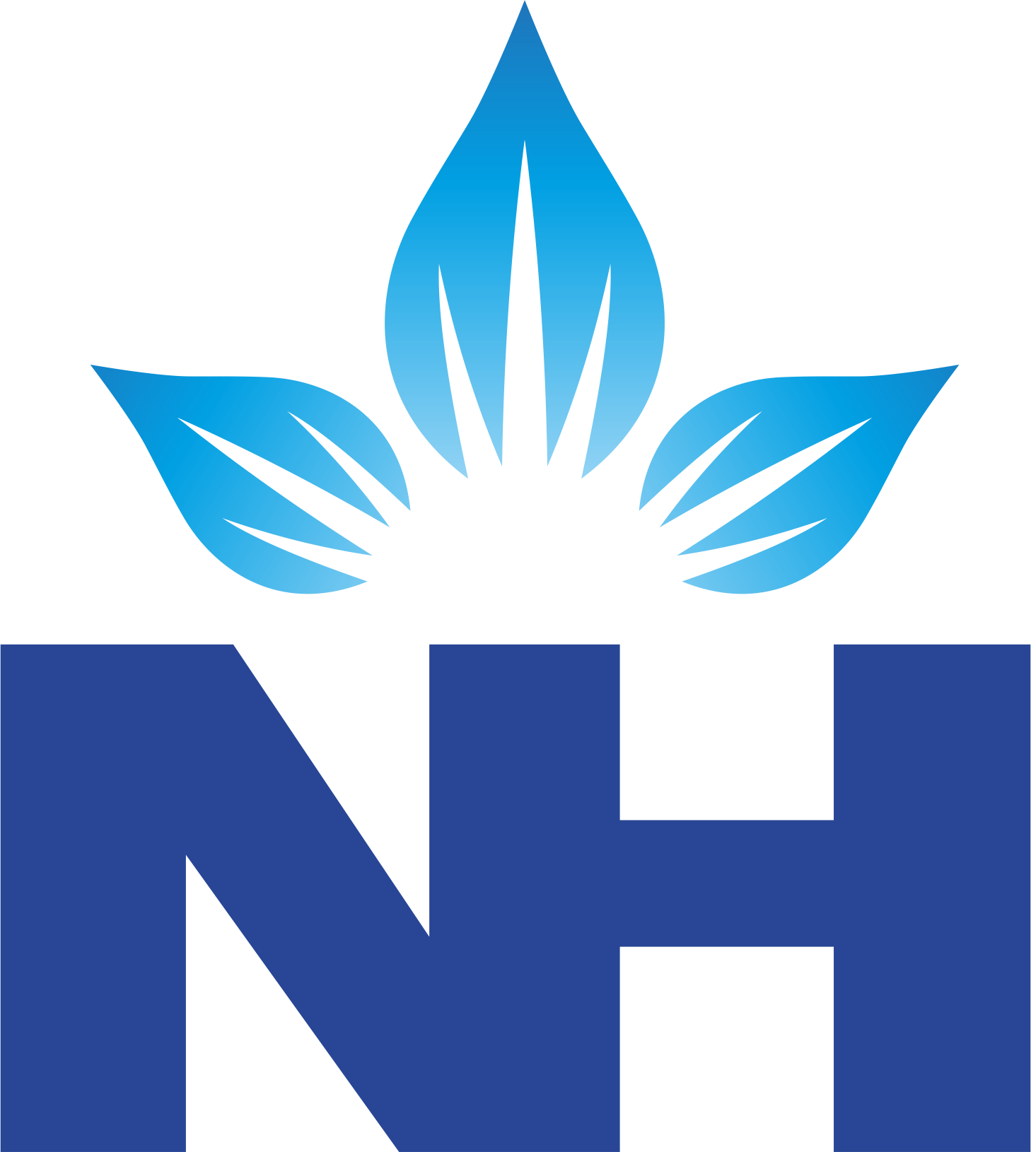 partner narayanahealth